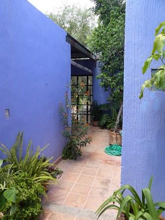 Purple House Rentals